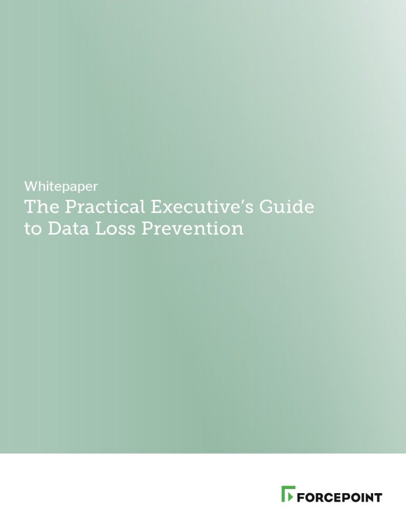 The Practical Executive's Guide to Data Loss Prevention