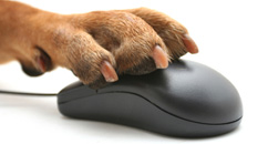 Paw Mouse