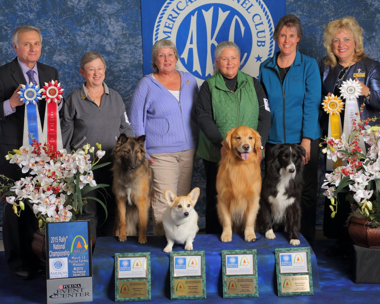 Akc rally national championship american kennel club