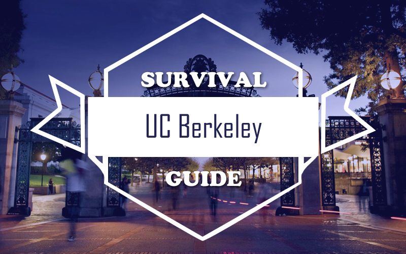survival guide essay Essay hell's writing survival kit this is my most recent writing guide it has everything a student needs to learn how to craft a winning narrative-style essay for.