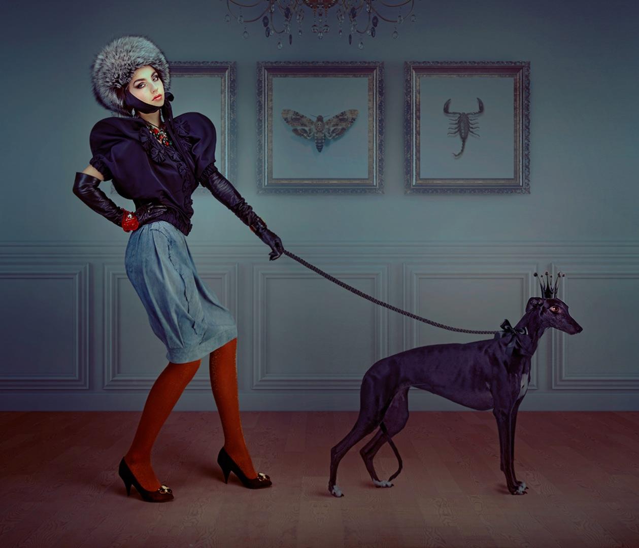 Lady, dog, room, leash, red, stockings, bescouted