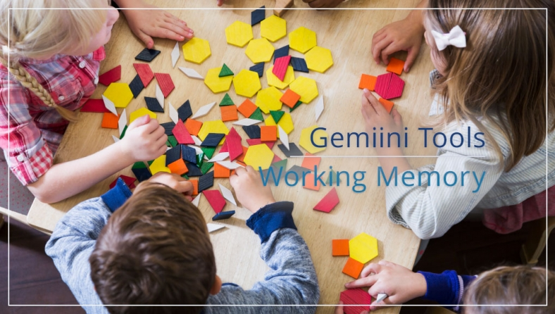 Gemiini's Working Memory Tool