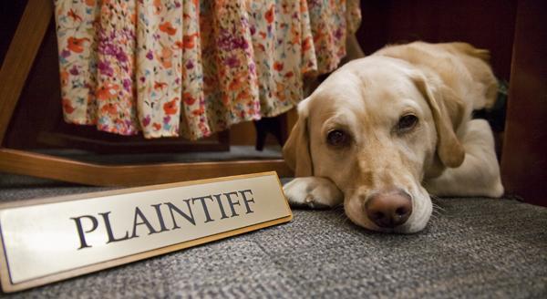 AS.Dog Court.042412.0078.WEB