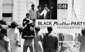 black-panthers-turn-5_perr-5