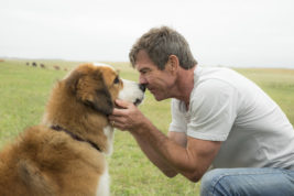 """This image released by Universal Pictures shows Dennis Quaid with a dog, voiced by Josh Gad, in a scene from """"A Dog's Purpose.""""  A spokesman for American Humane said Wednesday, Jan. 18, 2017 that it has suspended its safety representative who worked on the set of the film when a frightened German shepherd, not shown, was forced into churning waters. (Joe Lederer/Universal Pictures via AP)"""