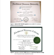 A screenshot from the private investigator's report shows a falsified degree, provided by Nelson, from Northwest Nazarene University in Idaho. The second of the two certificates is a legitimate degree, provided by the university, granted the same year Nelson alleged to have received his certificate from NNU.