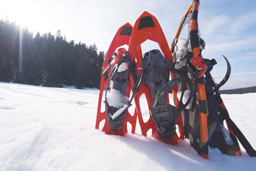 winter snowshoes
