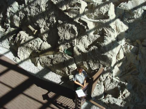 Dino-Quarry