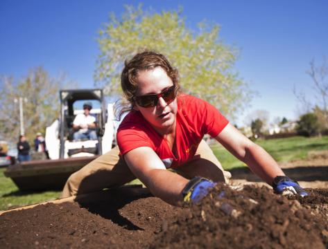 20120420-4826K-Veggie Garden Excelsior-0026-tonedwc