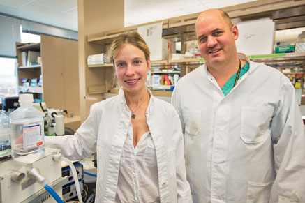 Dr. Almut Grenz (left) and Dr. Holger Eltzschig (right) pose in their laboratory, Jan. 28 at Anschutz Medical Campus. Grenz and Eltzchig have been involved in a research study that identified a group of molecules that has the potential for decreasing damage to organs during procedures that require anesthesia.  (Marla R. Keown/Aurora Sentinel)