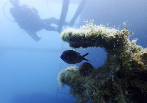 Albania Underwater Treasures