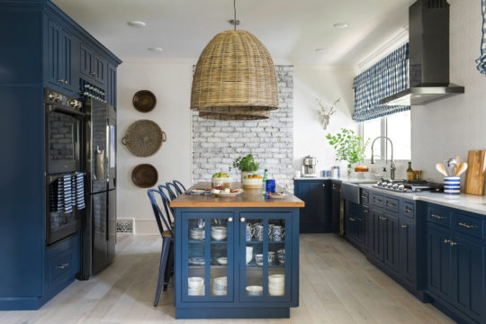 Homes Designer Colorful Cabinets