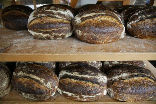 Travel Bread Lover's Honeymoon
