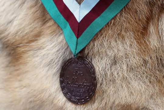 WWII dog gets posthumous award