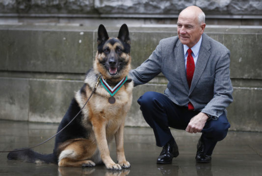 Heroic dog Chips who met Churchill posthumously awarded animal equivalent of VC
