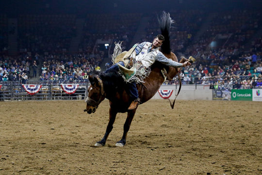 Bareback Riding event during a rodeo Jan. 12 at the 2018 National Western Stock Show.