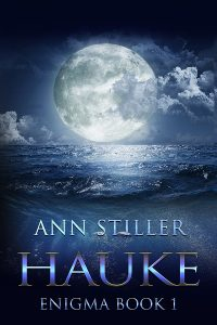 AnnStiller_Enigma_Book1_Hauke_Ebook_600x900