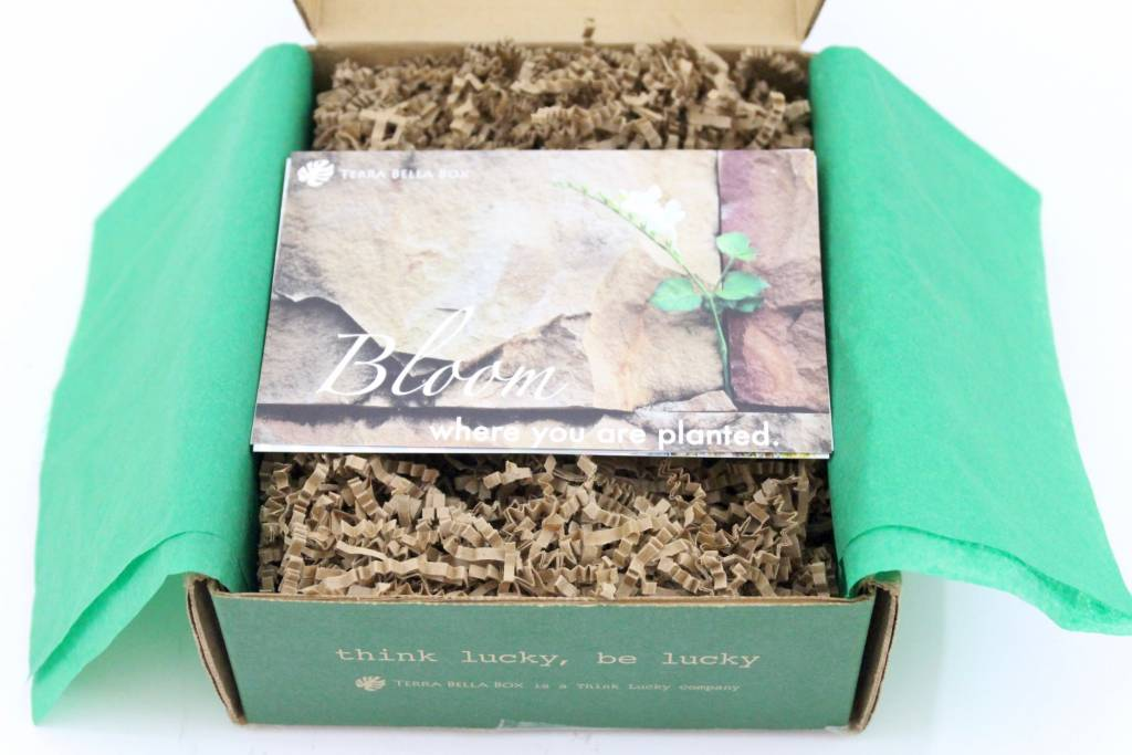 Terra Bella Box Review May 2016-3