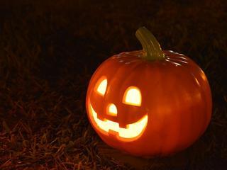Pumpkin 1544602 640