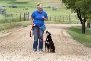 Happy Tails Dog Ranch