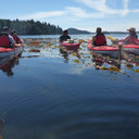 Tofino Kayaking Tour 2016-08-12_14_6