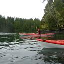 Tofino Kayaking Tour 2016-09-06_P1070989
