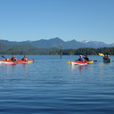 Tofino Kayaking Tour 2016-09-12_P1080239
