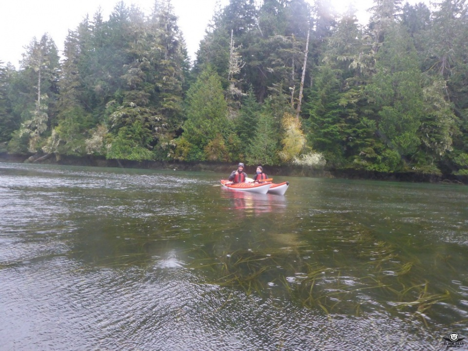 Tofino Kayaking Tour 2016-10-03_012