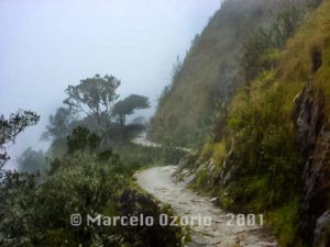 Beautiful Sceneries of the Inca Trail