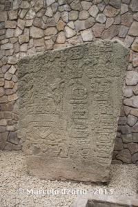 Monte Alban Museum - Oaxaca - Mexico 529