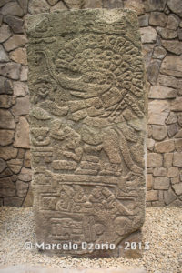 Monte Alban Museum - Oaxaca - Mexico 542