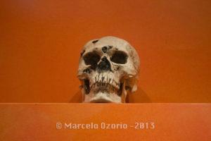 Monte Alban Museum - Oaxaca - Mexico 549