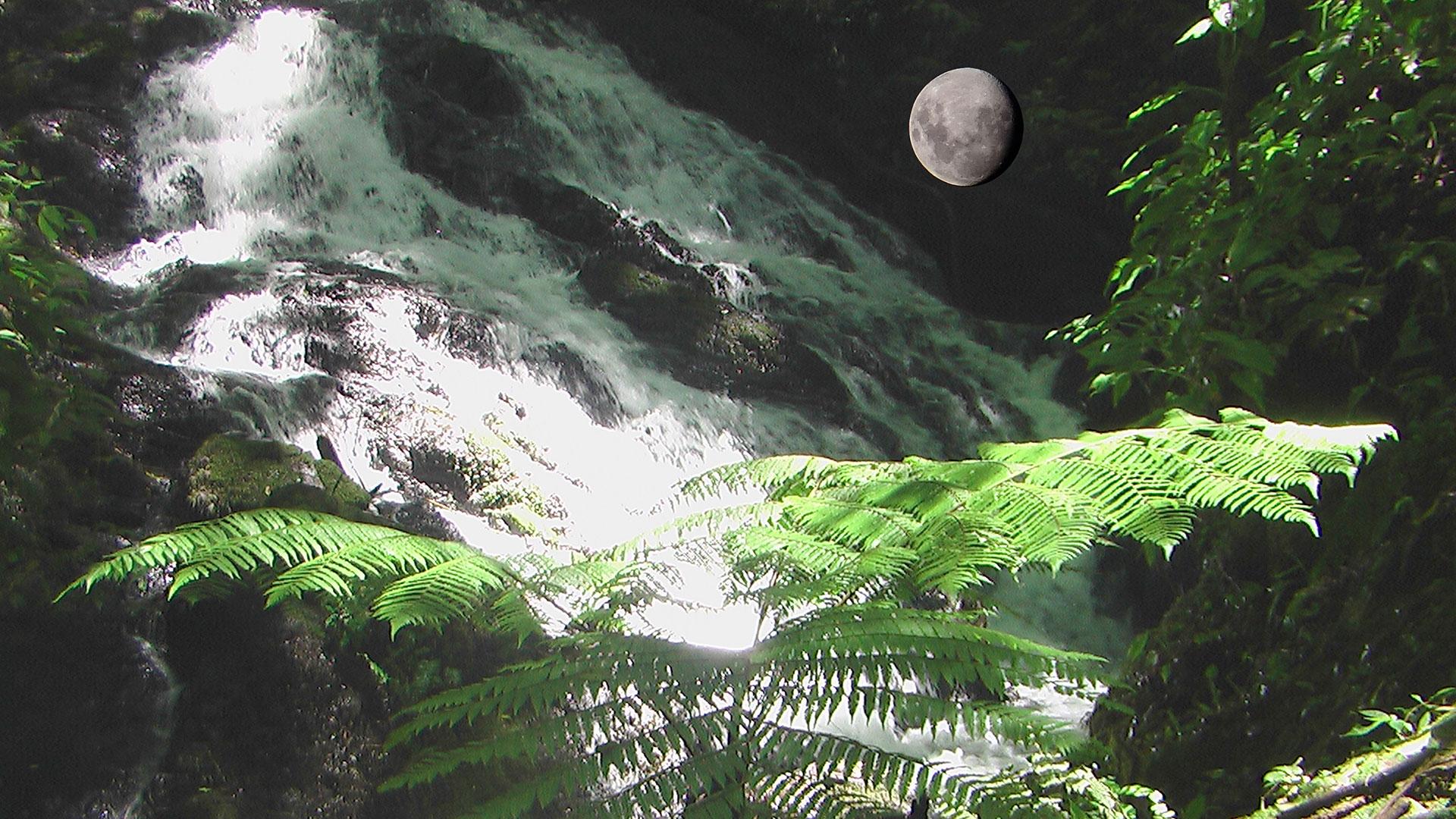 Cachoeiras da Mata Atlântica - Intervales - Brasil