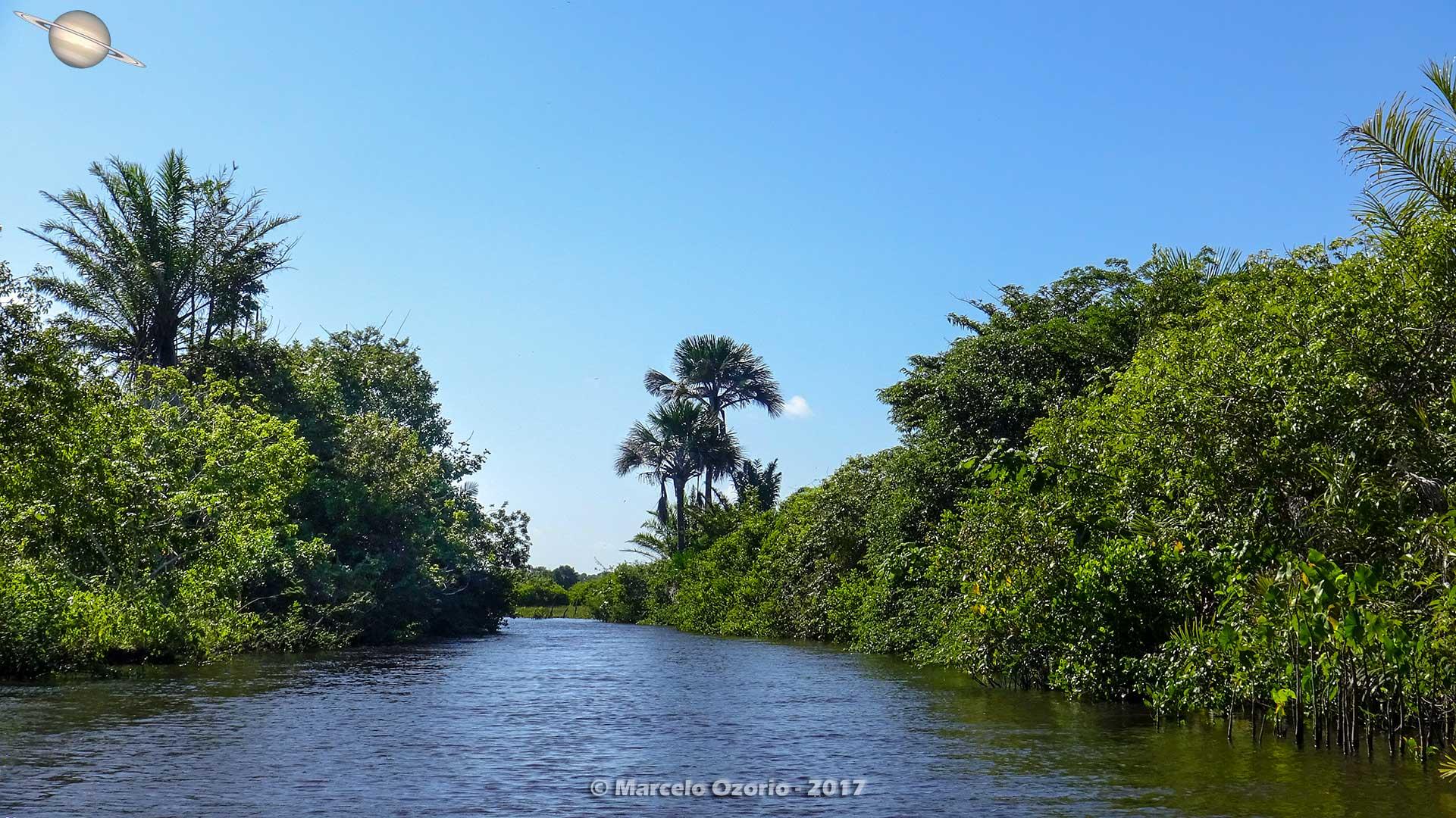 barreirinhas descendo rio preguicas atins 11 - Trekking at Lencois Maranhenses National Park - Maranhao - Brasil