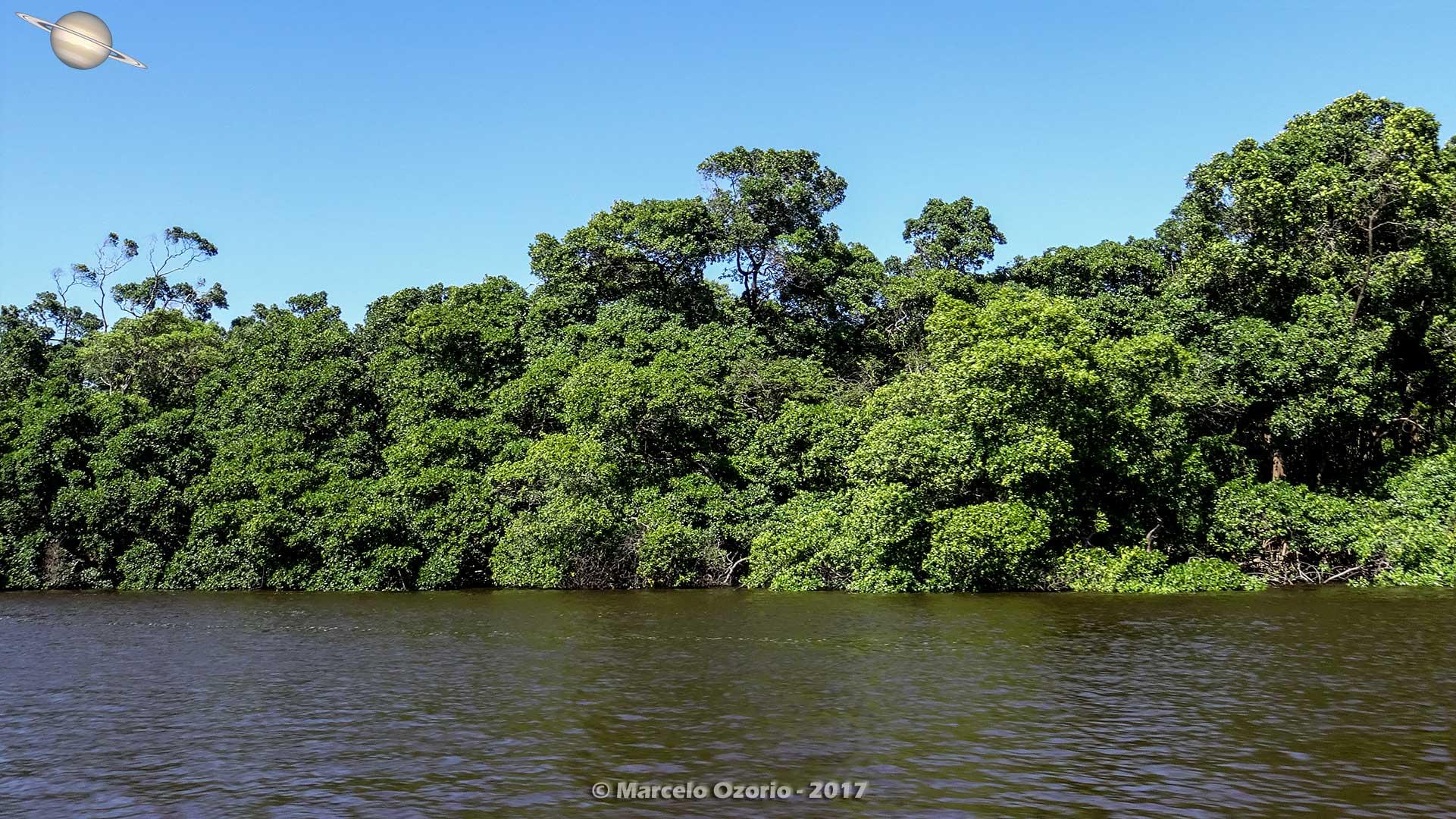 barreirinhas descendo rio preguicas atins 14 - De Barreirinhas à Canto do Atins. Trekking nos Lençóis Maranhenses - Brasil