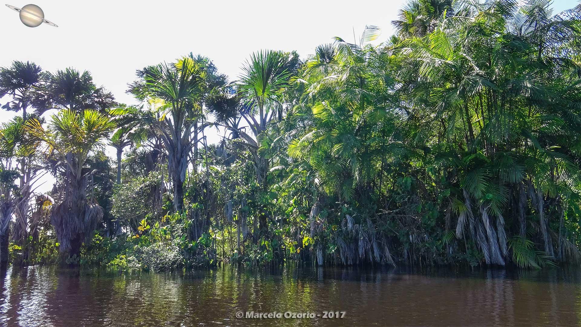 barreirinhas descendo rio preguicas atins 6 - De Barreirinhas à Canto do Atins. Trekking nos Lençóis Maranhenses - Brasil