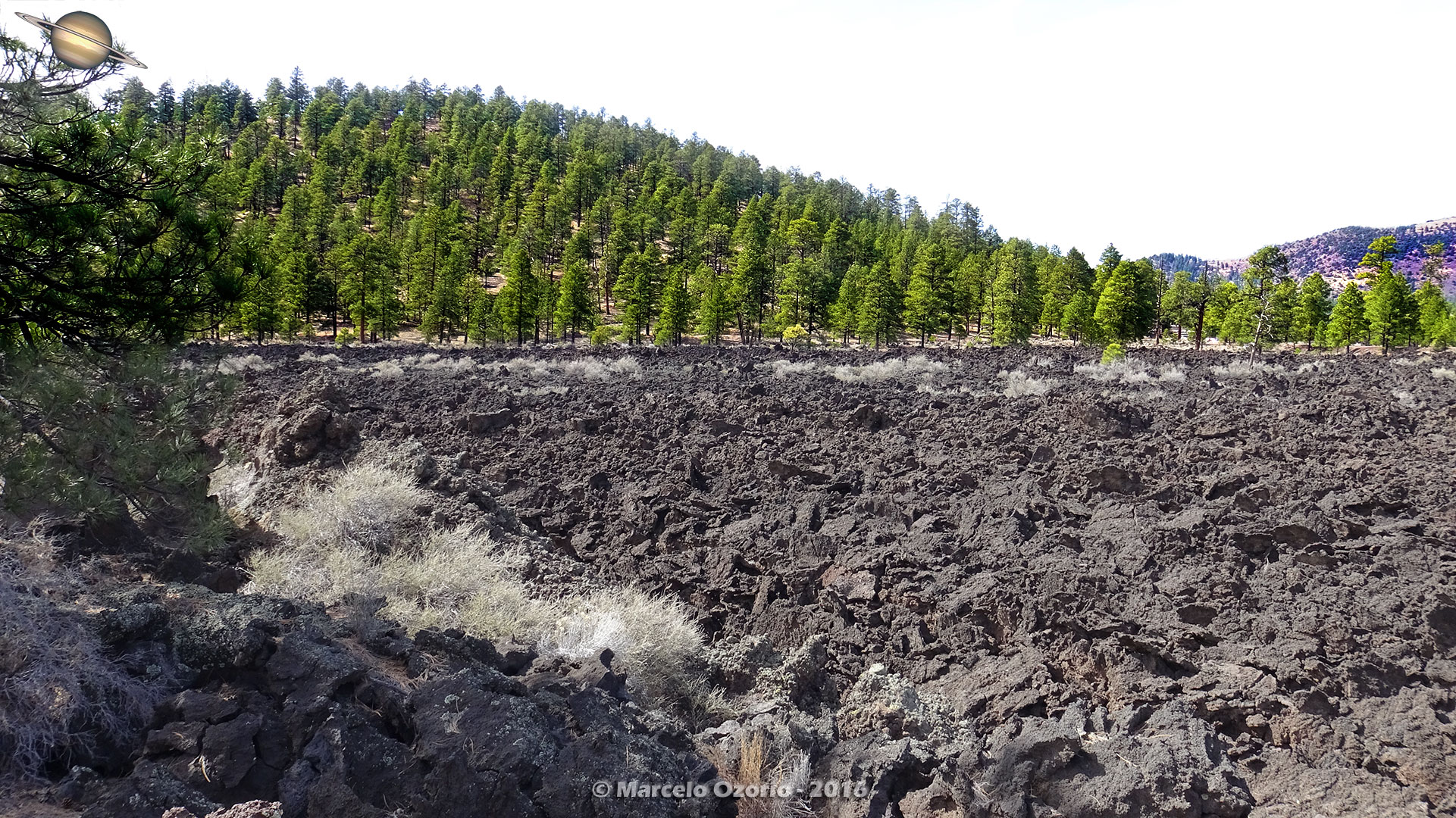 Sunset Crater Volcano Arizona 27 - Frozen Lava Fields at Sunset Crater Volcano - Arizona
