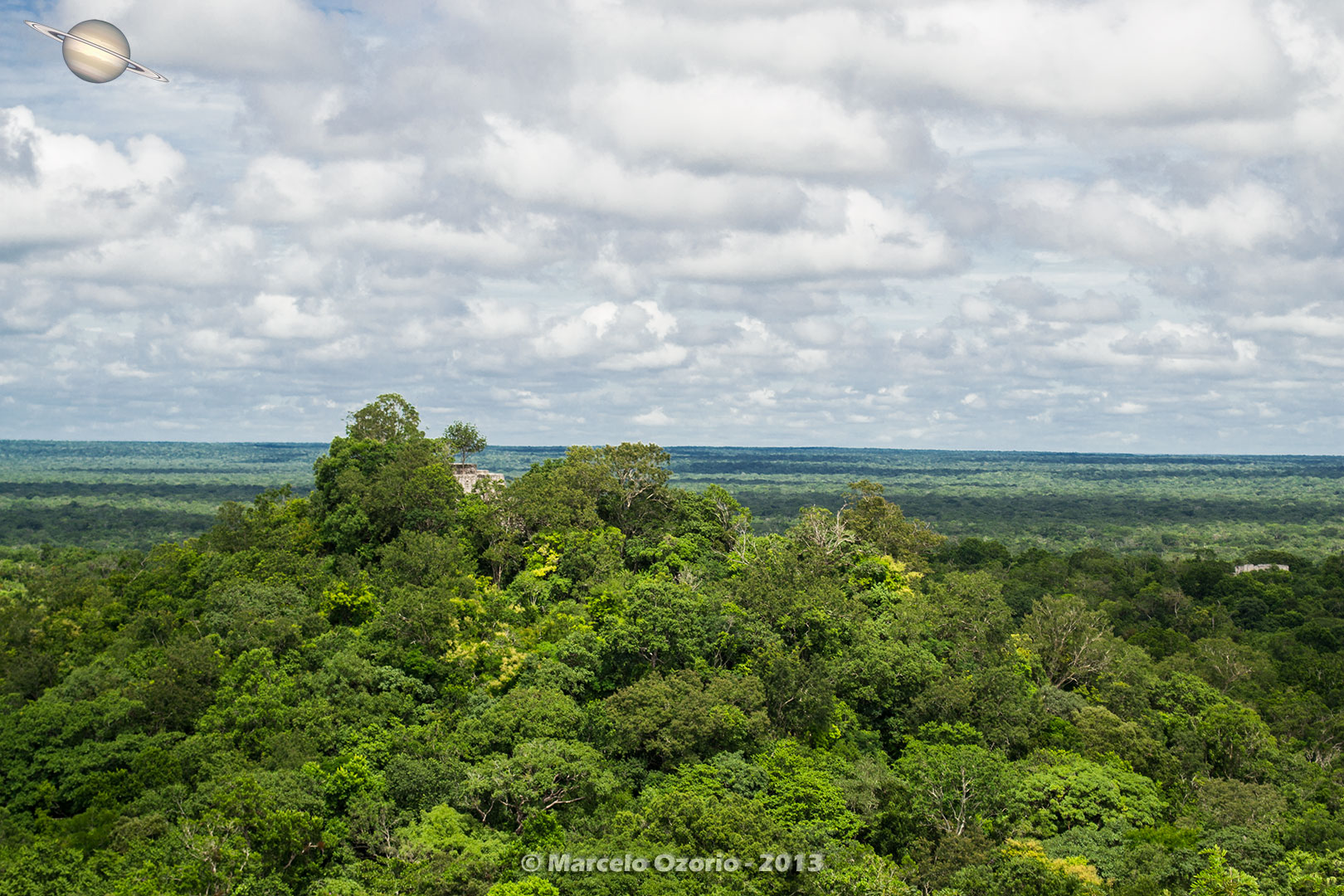 calakmul mayan civilization mexico 31 - Calakmul, City of the Two Adjacent Pyramids - Mexico