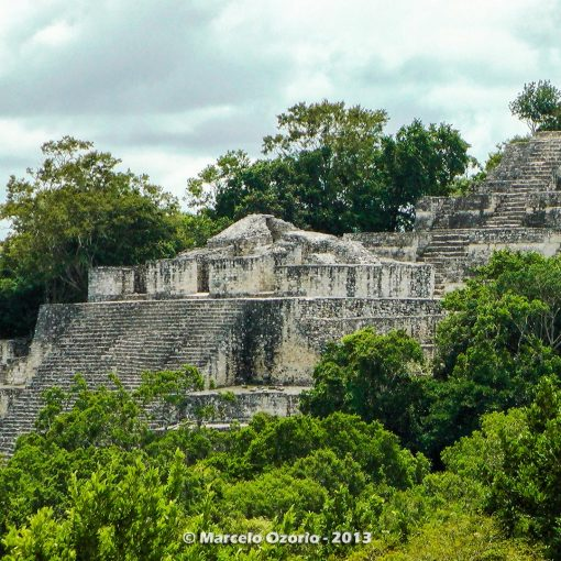 calakmul mayan civilization mexico 45 510x510 - Calakmul, City of the Two Adjacent Pyramids - Mexico