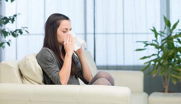 alergia hogar sala casa estornudo gripe