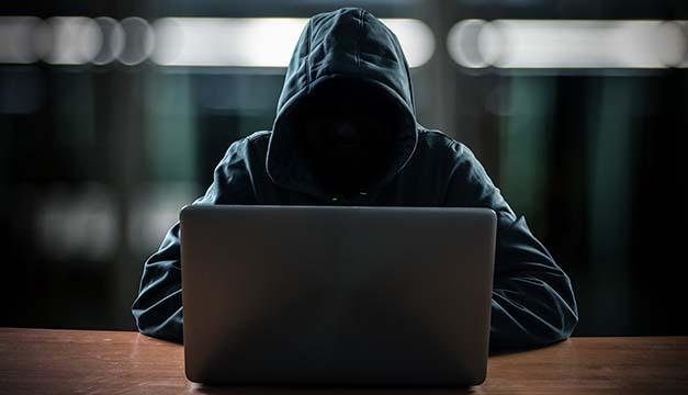 delito cibernetico