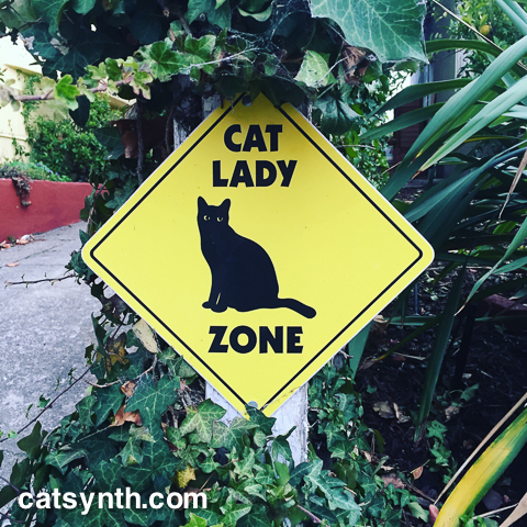 Cat Lady Zone