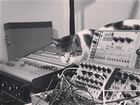 Lucy and Modular Synth