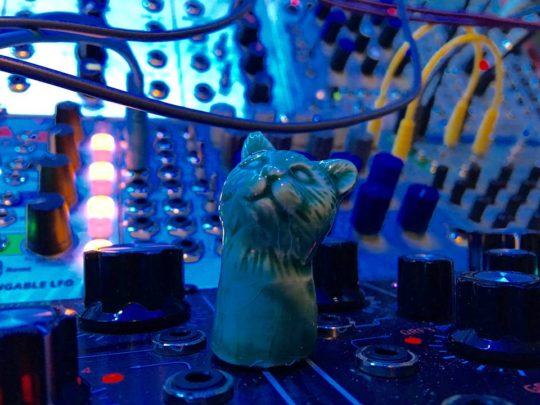 Eevolute modular synth setup with cat figurine