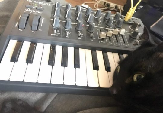 Runkl and Microbrute