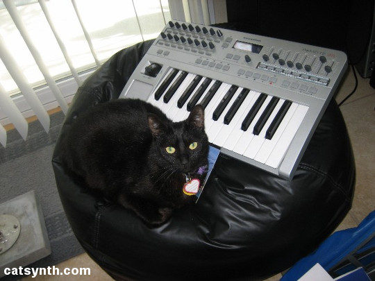 Luna with Novation Keyboard