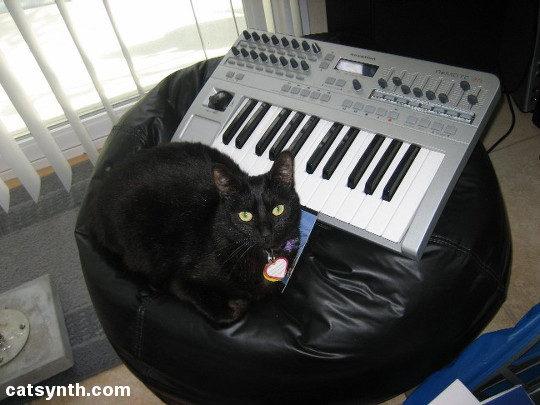 Luna with Novation Keyboard