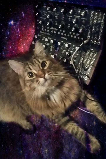 Loki with two Moog Mother-32 synthesizers