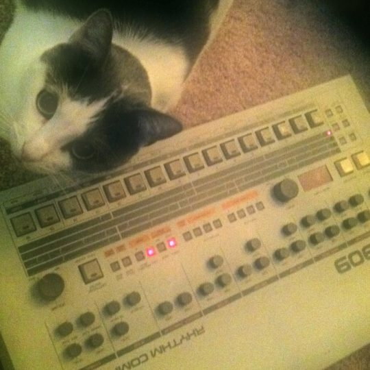Mister Kitty and Roland TR-909