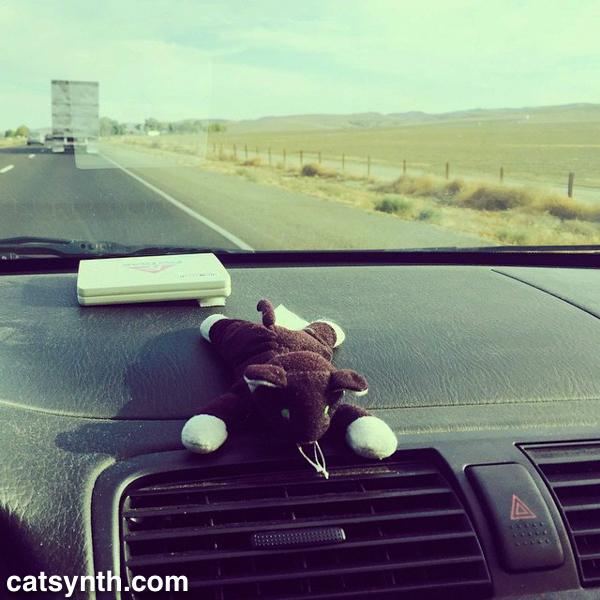 CatSynth on Interstate 5